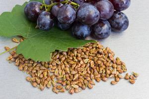 Виноградная косточка: польза для организма и популярные рецепты